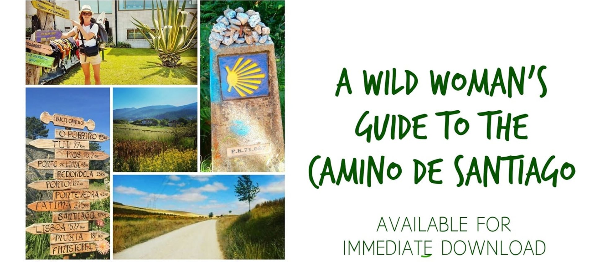 A Wild Woman's Guide To The Camino De Santiago Large Cover Image